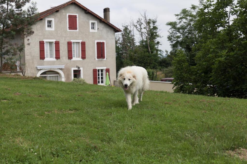 Apartments In Saint-cricq-chalosse Aquitaine