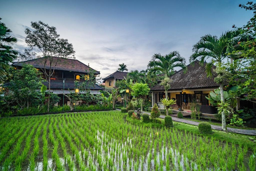 28ed326a6eecb Bliss Ubud Spa Resort, Ubud – Updated 2019 Prices