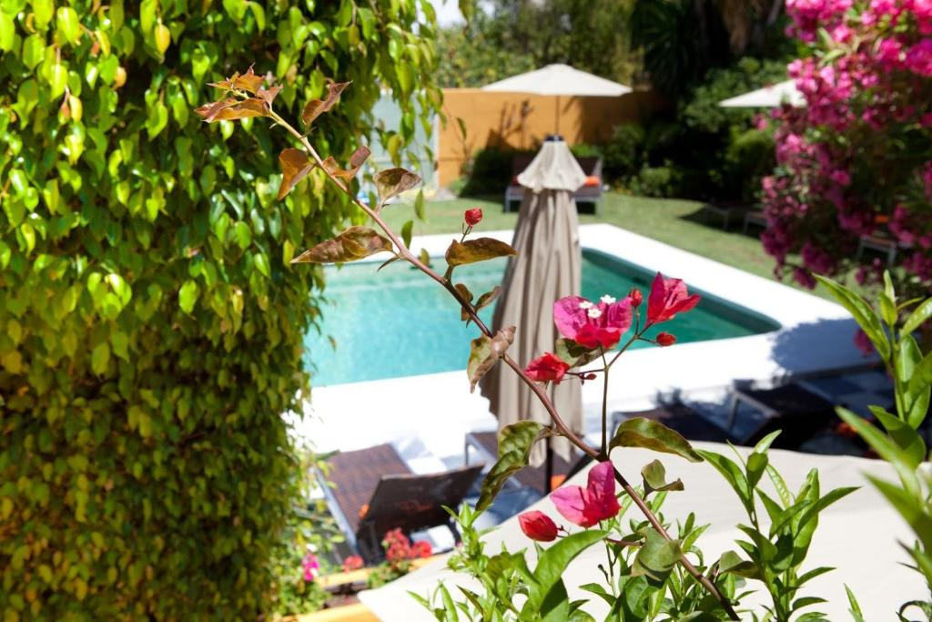 boutique hotels estepona  27