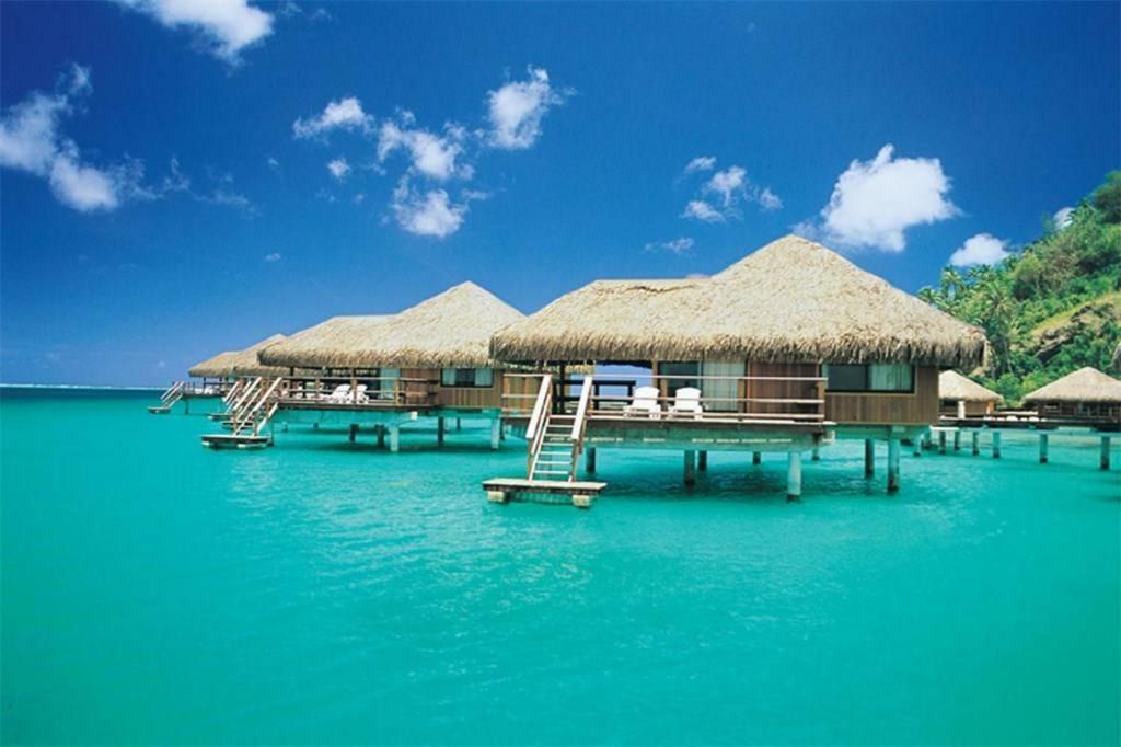 luxury villa bora bora, Bora Bora – Prezzi aggiornati per il 2019