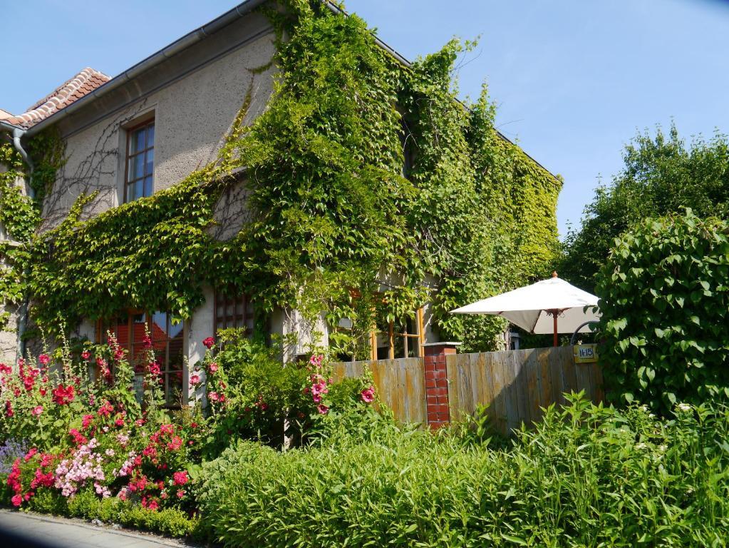 Ferienwohnung Haus Vincent Stralsund Deutschland
