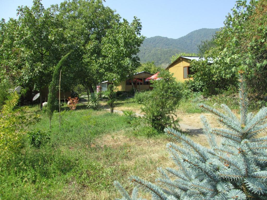 Bio Yard
