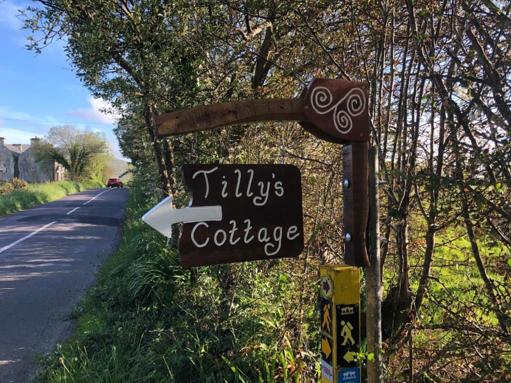 Tillys internet service