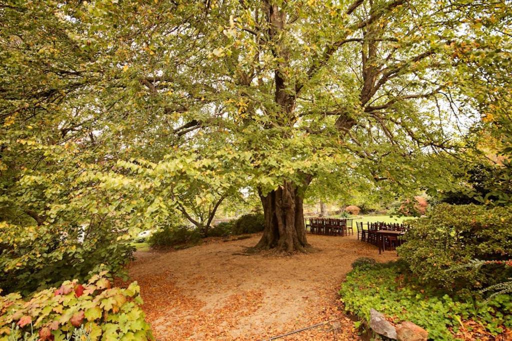 resort waldorf leura gardens australia booking com rh booking com