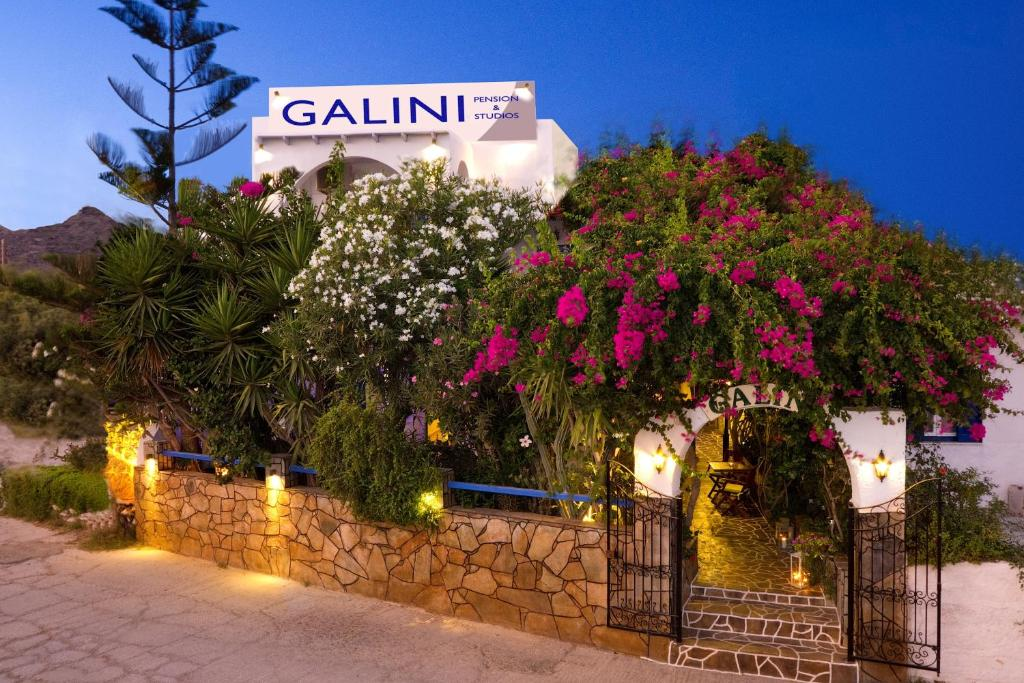 20451036 - Galini Pension