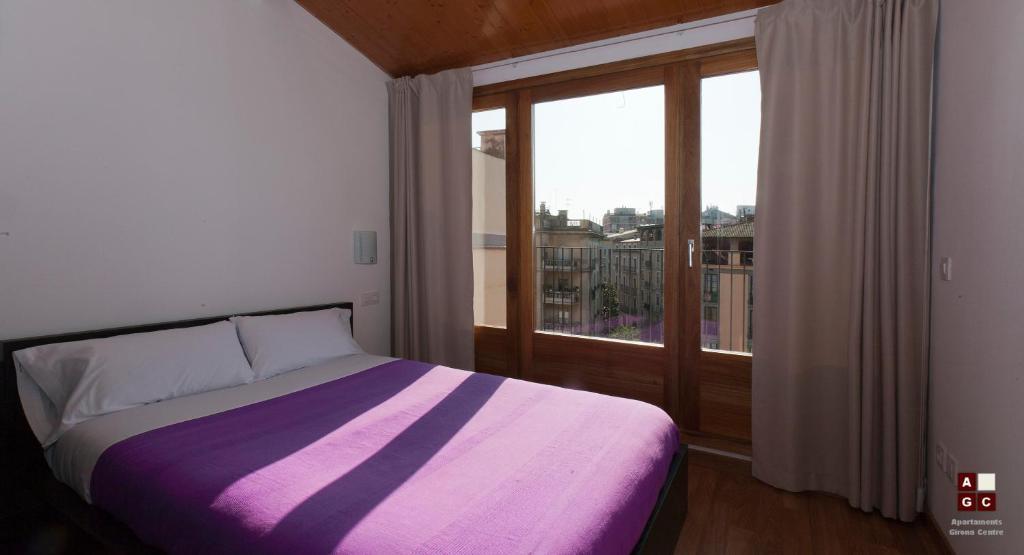 Apartaments Girona Centre imagen