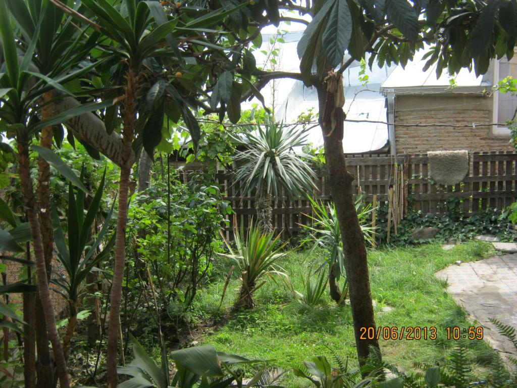 Bany Guest house