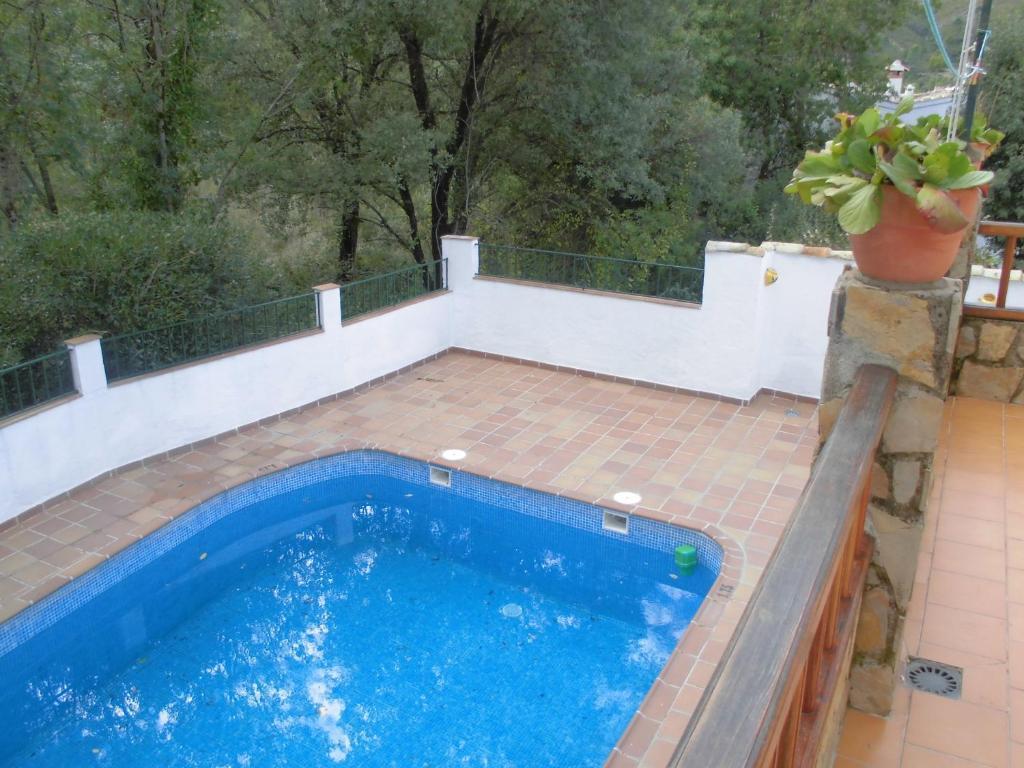 Foto del Apartamentos Sevilla