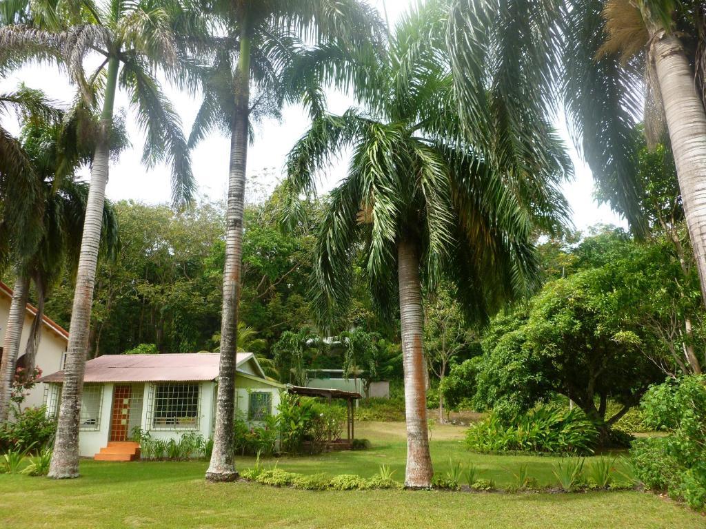 Fern Villa, Boscobel, Jamaica - Booking.com