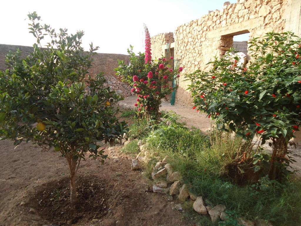 Hotel Takad Dream Rural, Takate, Morocco - Booking.com