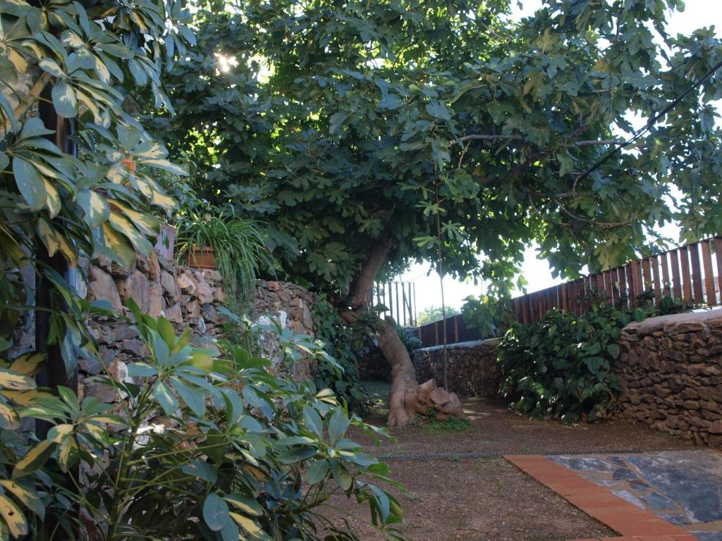 hotels with  charm in cáceres provincia 3