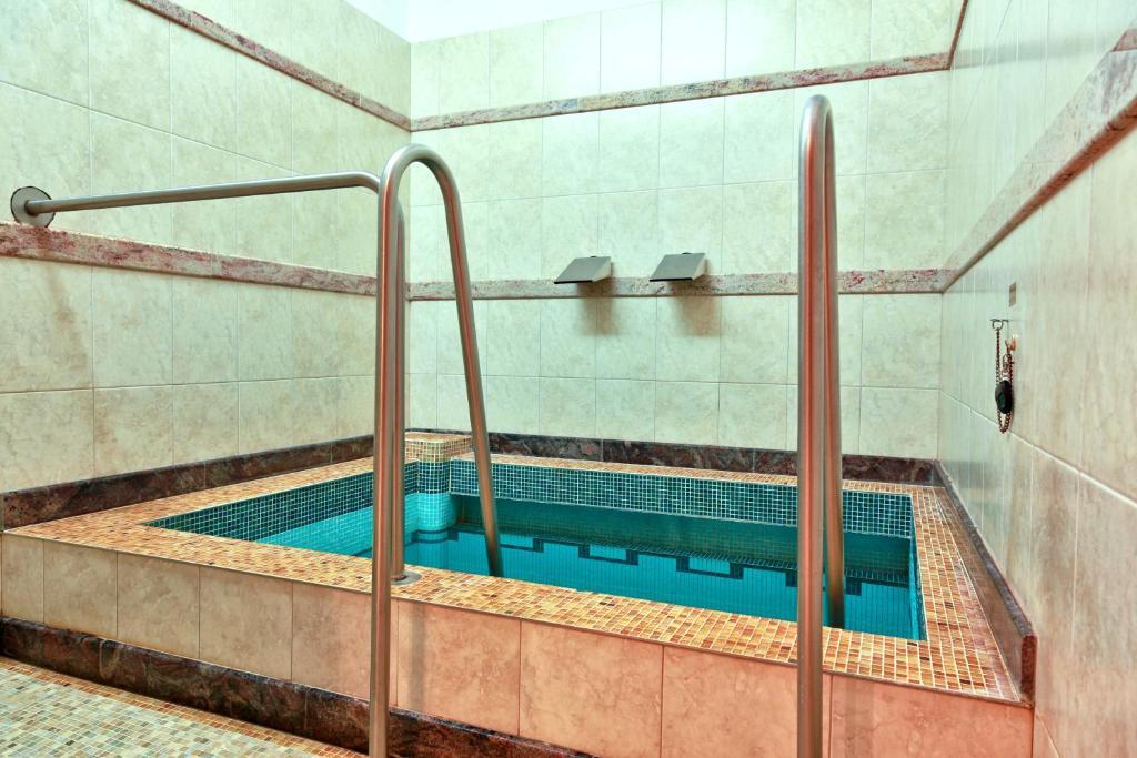 Hotel Agricola Sport & Wellness Centre (Tschechien Marienbad ...