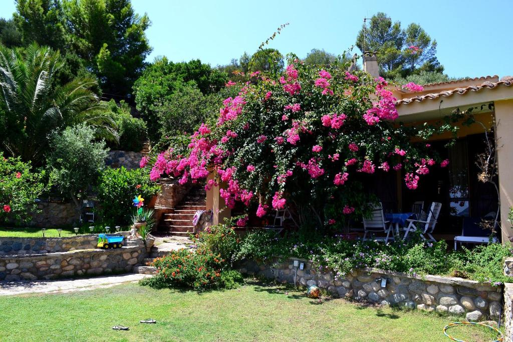 Buy a house in Torre delle Stelle cheap with photos without intermediaries