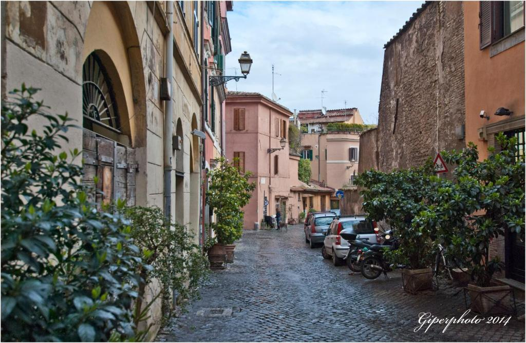 Trastevere Cedro Apartment Rome Italy Booking Com