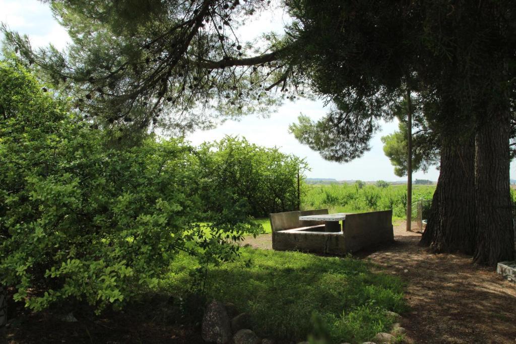 Imagen del Casa Rural Cal Dalfó