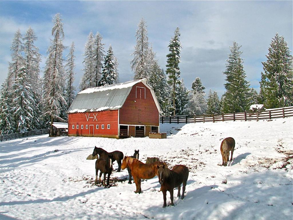 guest ranch sandpoint Western idaho pleasures