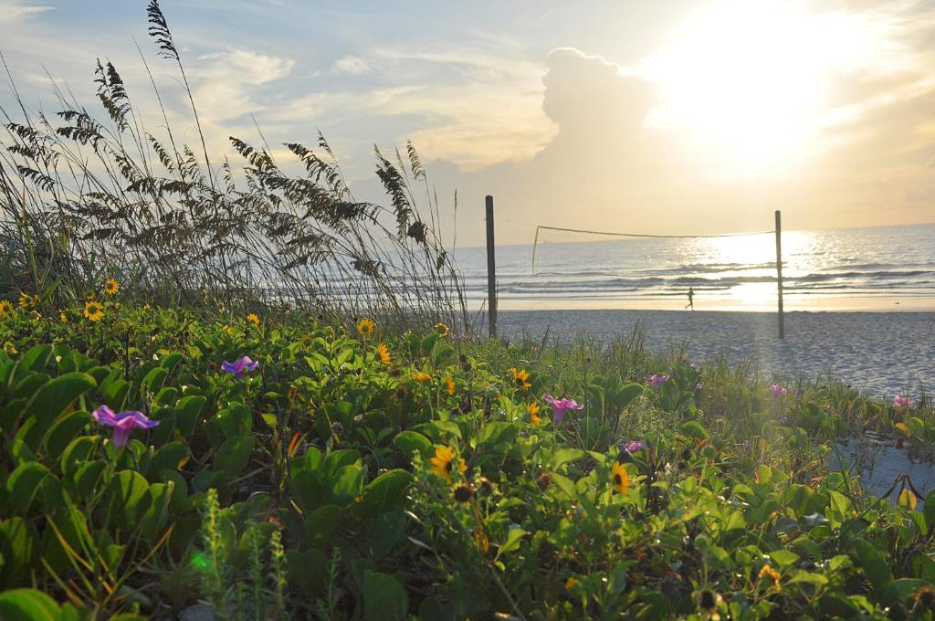 Gallery image of this property. Wakulla Suites a Westgate Resort  Cocoa Beach  FL   Booking com