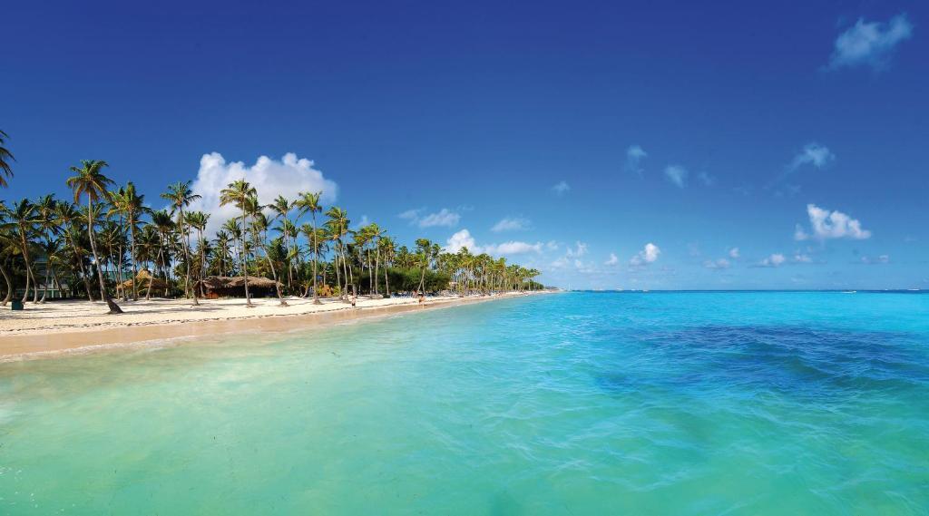 Resort Barceló Bávaro Beach Punta Cana Dominican Republic Booking