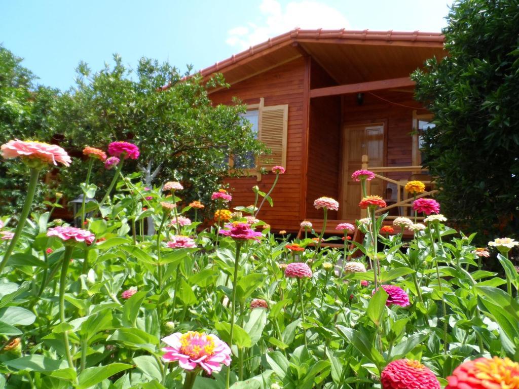A garden outside Ugur Pansiyon Bungalows