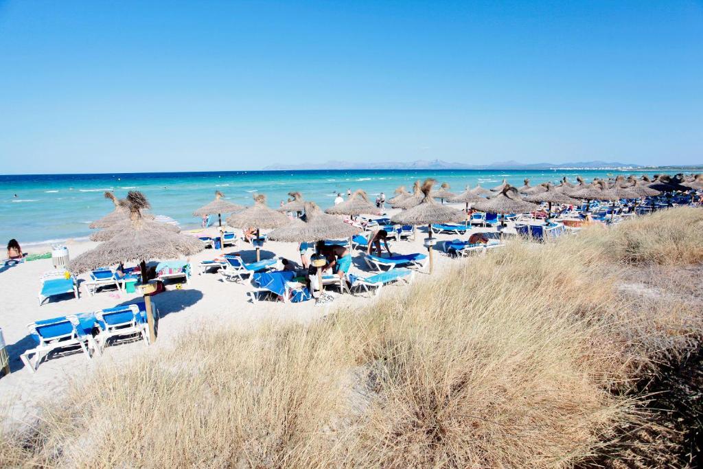Grupotel Alcudia Suite Playa de Muro Updated 2018 Prices