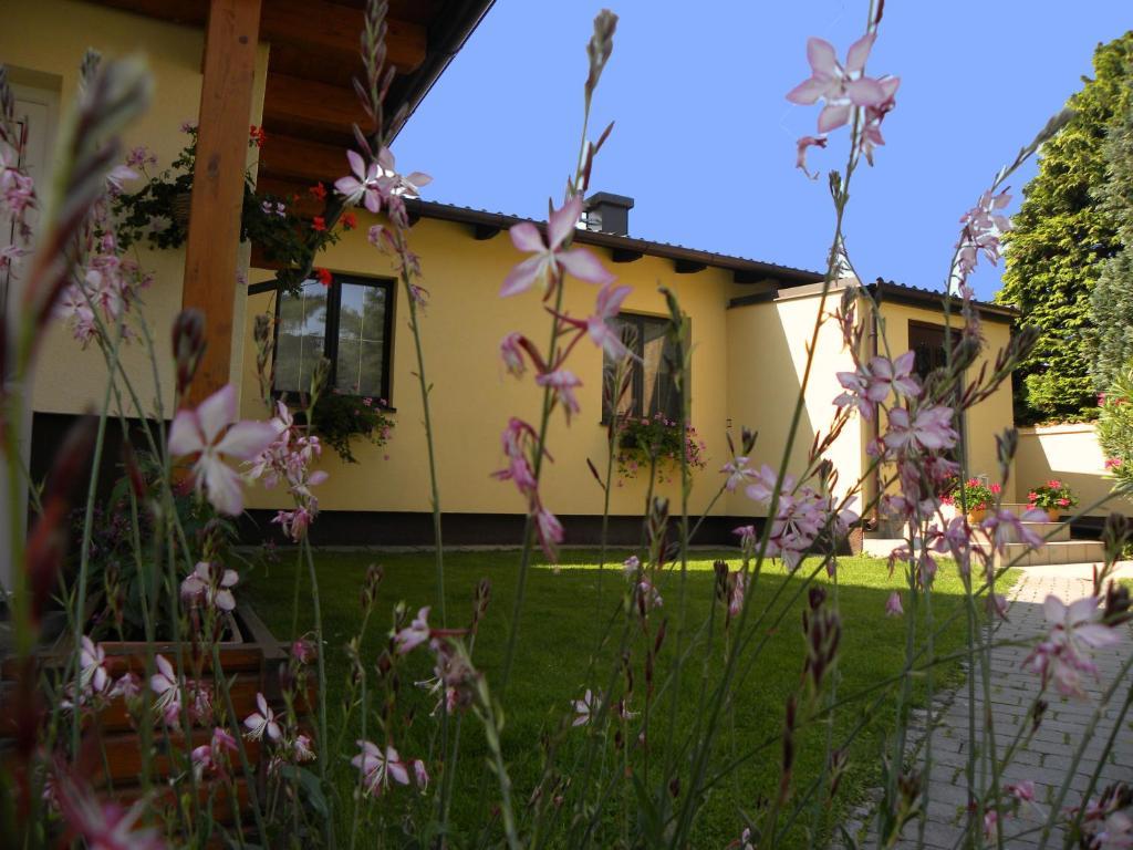 Hotels in der Nähe : Appartement/Haus Sonnenhain