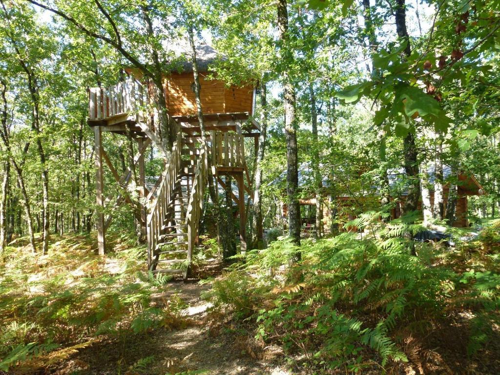 cabane dans les arbres correze