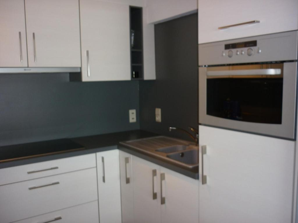 Кухня или кухненски бокс в Apartment Orion 14