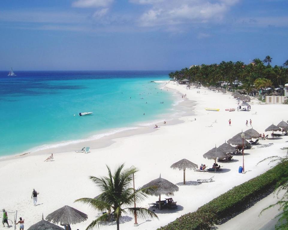 Divi Village Oranjestad Resort Palm Eagle Beach Aruba Booking