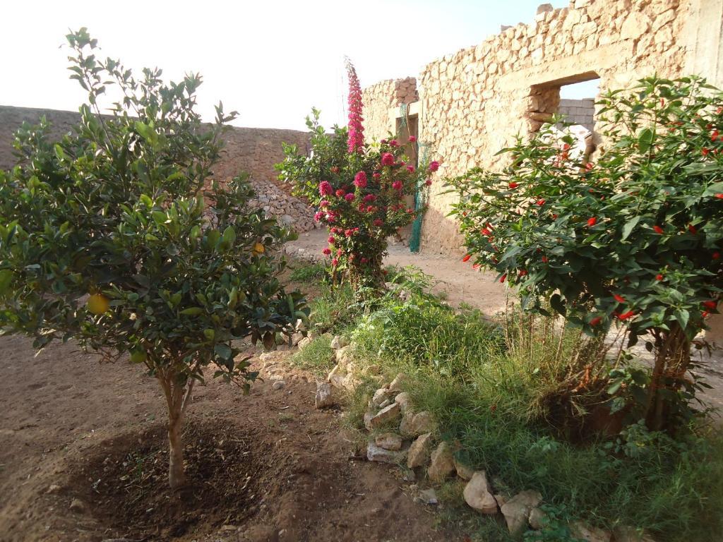Takad Dream Hostel Rural, Sidi Bibi – Updated 2018 Prices