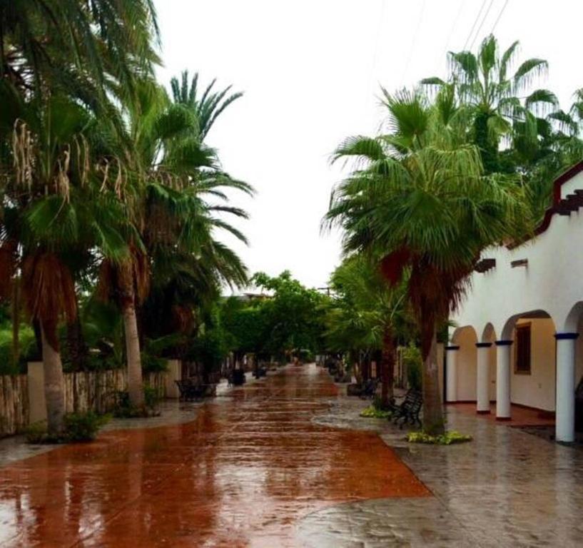 Apartments In Loreto Baja California Sur