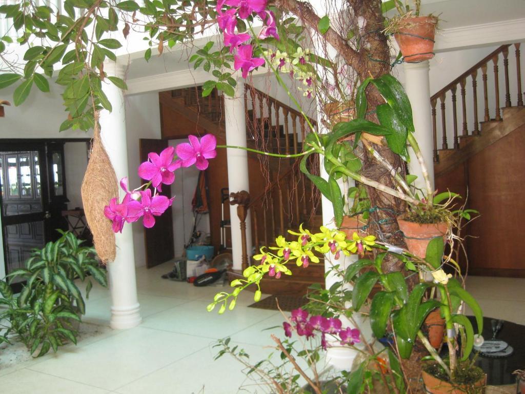 Palm Beach Villa Wadduwa Sri Lanka