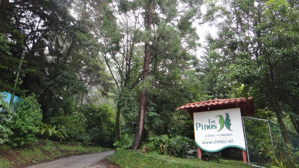 Cabaas de madera los pinos cool la empresa with cabaas de for Jardines costa rica