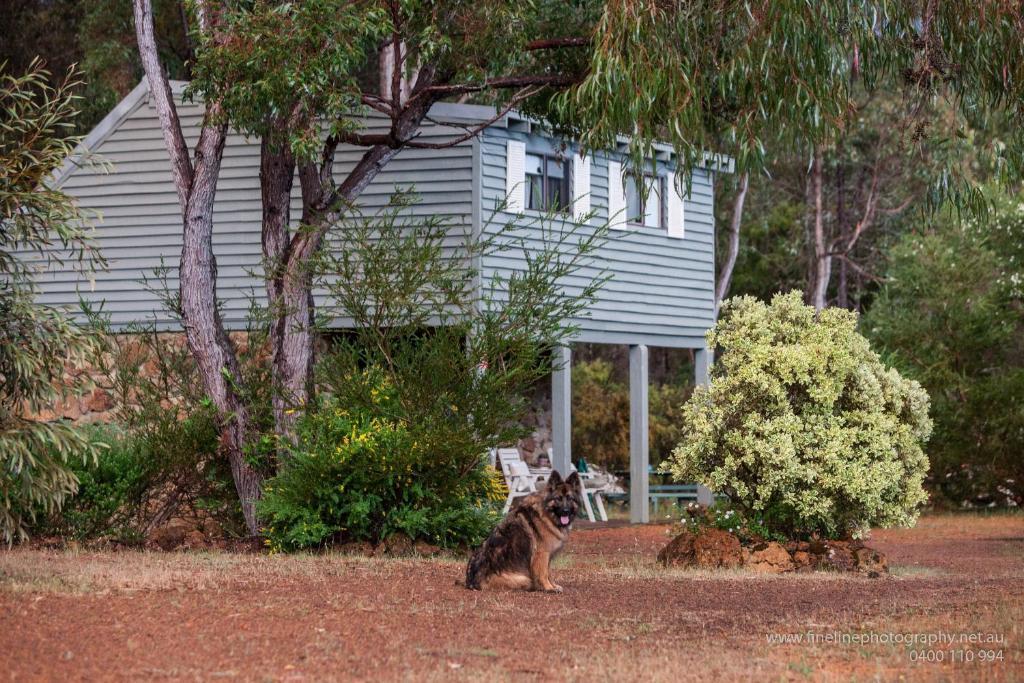 margaret river stone cottages reviews