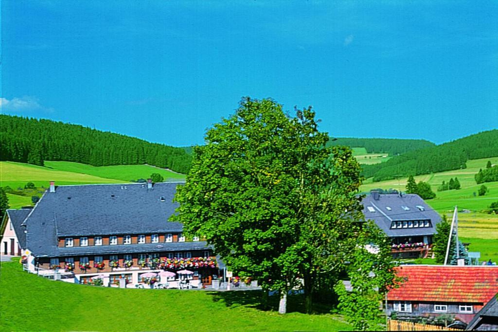 Vue panoramique sur l'établissement Hotel Zum Löwen - Unteres Wirtshaus