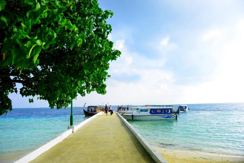 Image result for biyadhoo island resort maldives