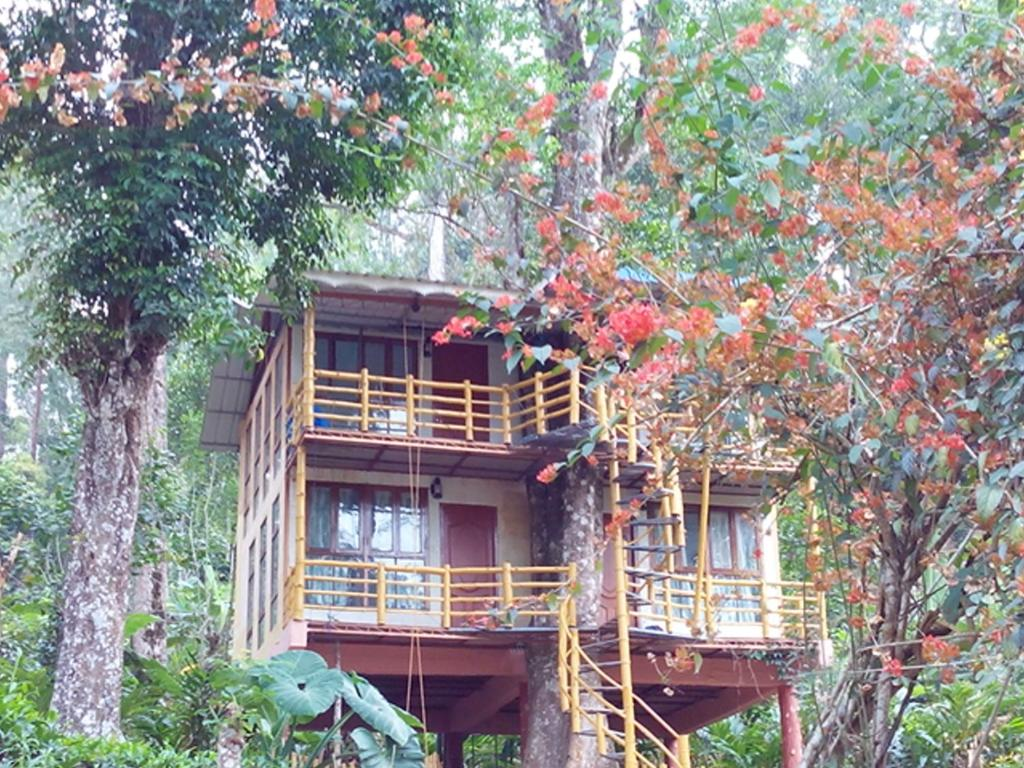 Tree House Hotel Great Home Design