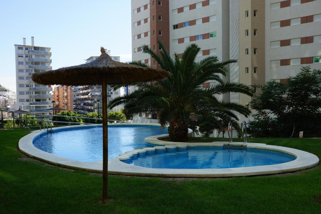 Imagen del IBG Apartment Vila Park
