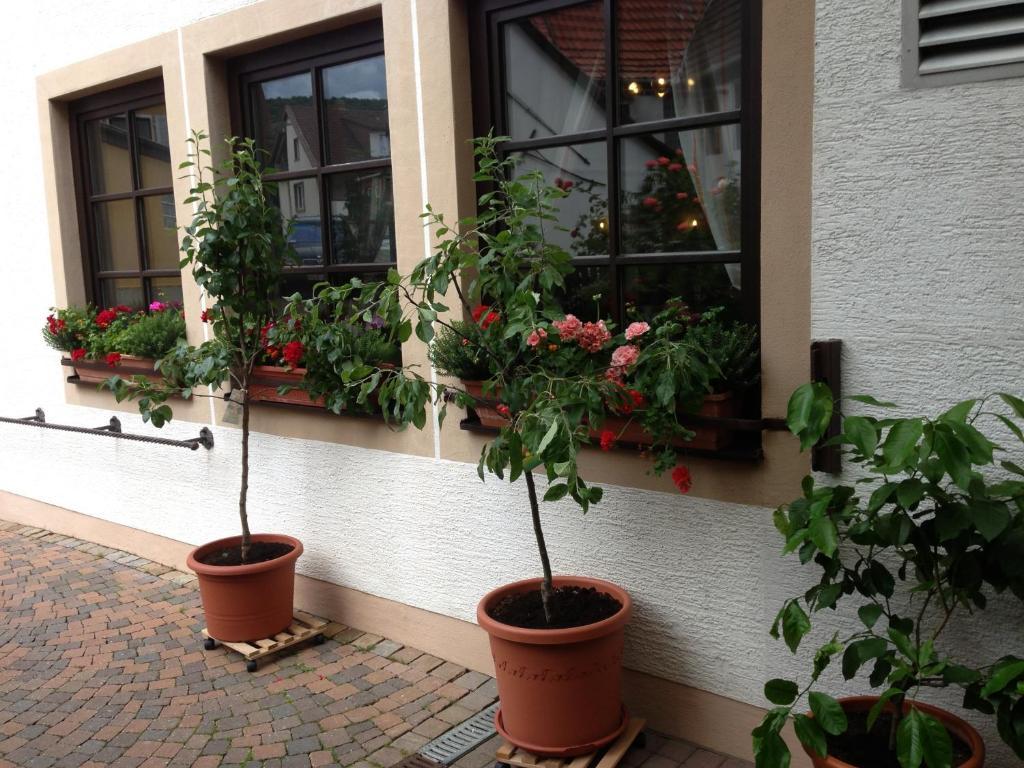 Hotel Marktschänke (Deutschland Bad Dürkheim) - Booking.com