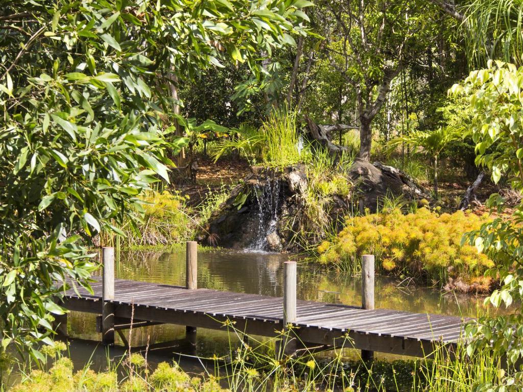 queensland rainforest resort