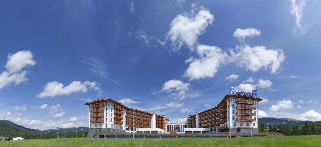 ПриватБанк залучить провідні консалтингові компанії для продажу курорту «Буковель», стадіону «Дніпро» та інших великих об'єктів