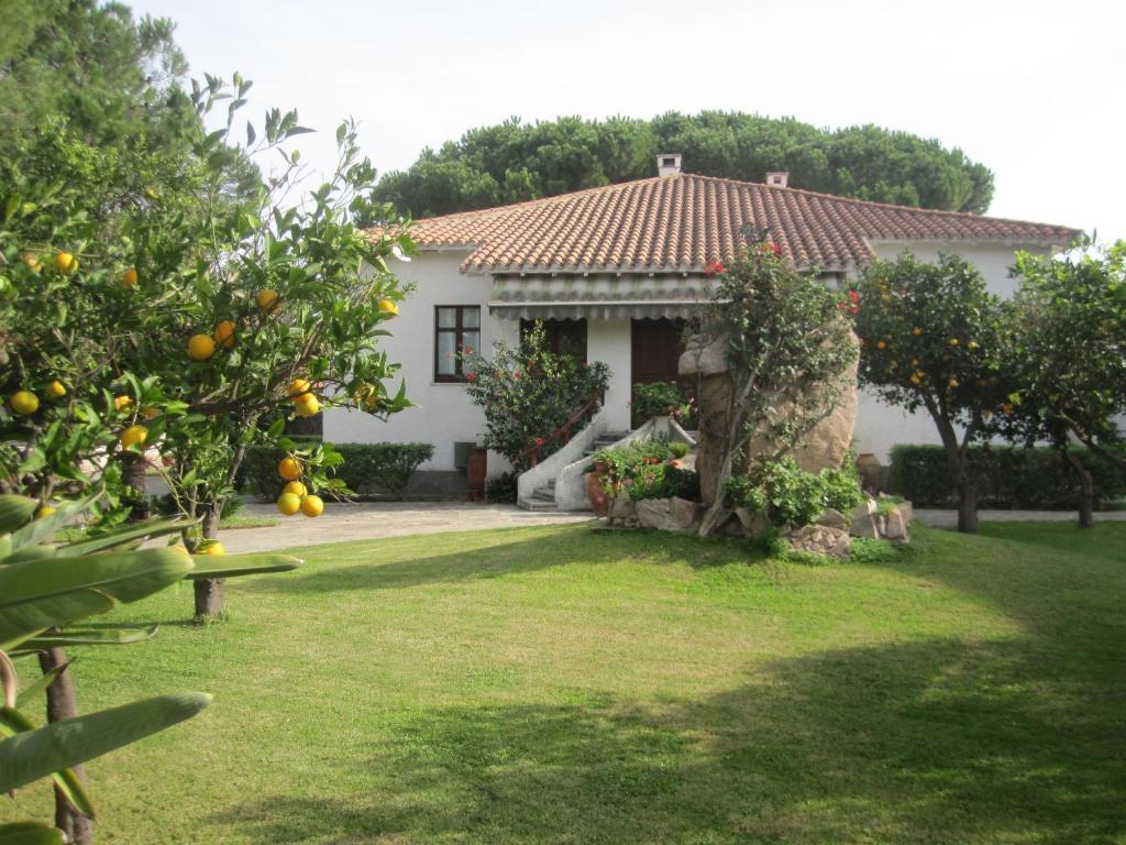 Villa giardini - Foto di ville con giardino ...