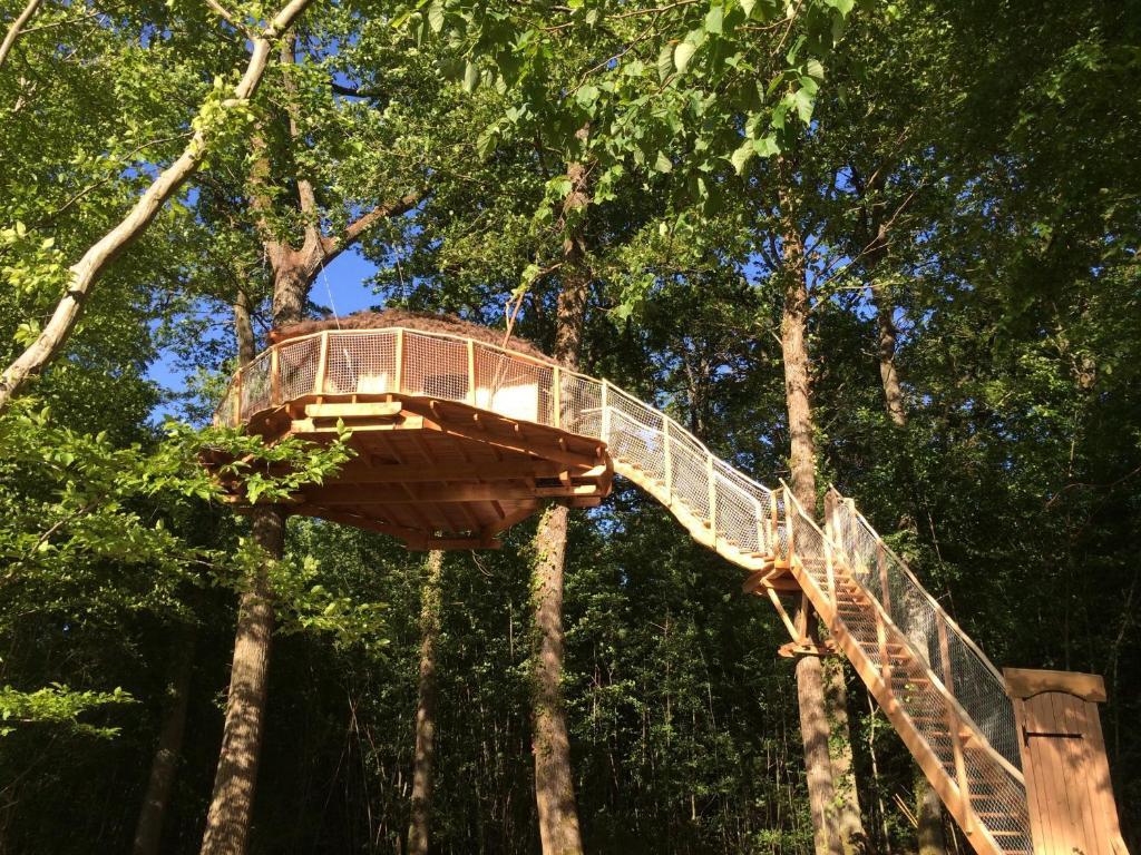 cabane dans les arbres au bois orient grand est