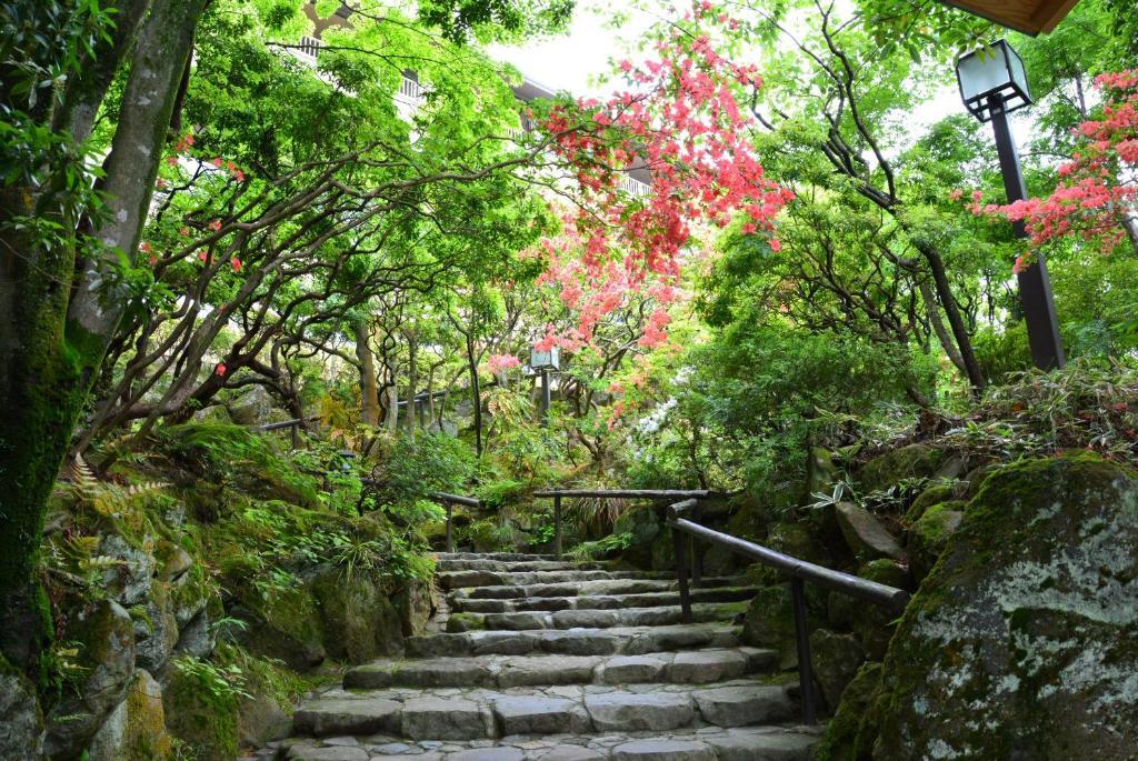 ポイント3.宿を包み込む自然を館内で感じる