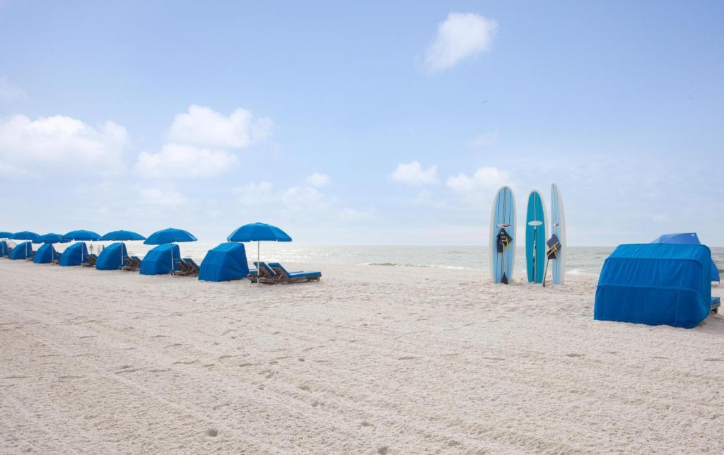 Delightful Hilton Garden Inn Orange Beach Gulf Shores AL Bookingcom Nice Design
