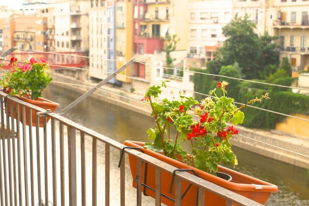 Imagen del Apartamentos Casa Flora