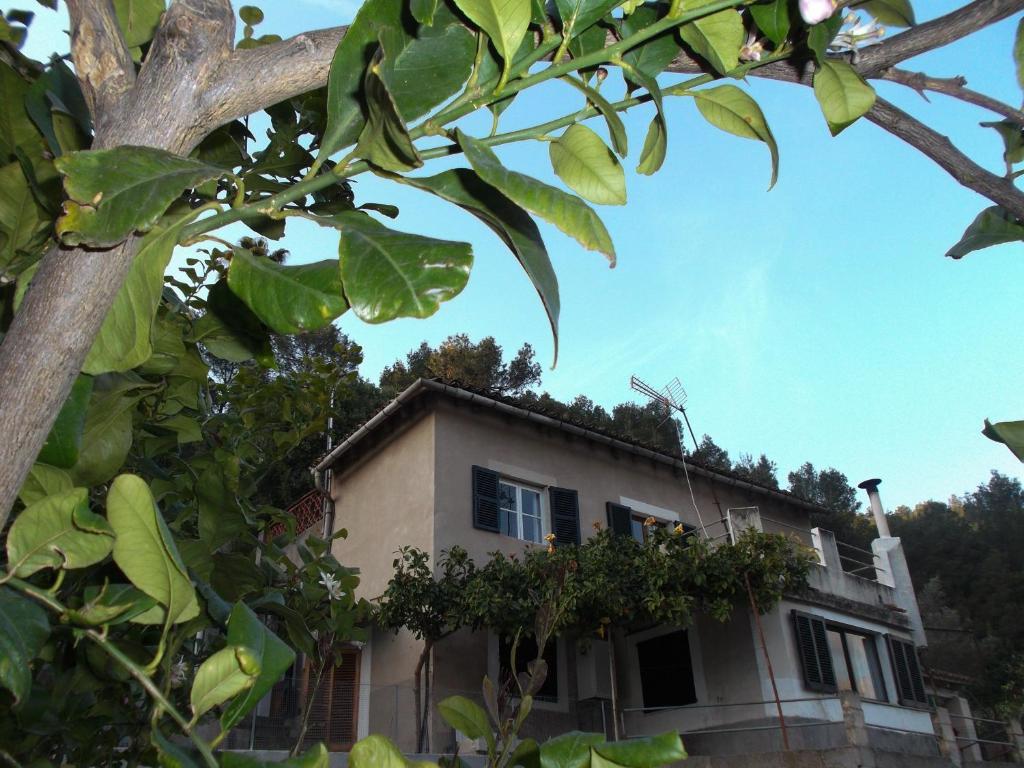 Vasca Da Bagno Roca Prezzi : Bidet sospeso in porcellana inspira square roca