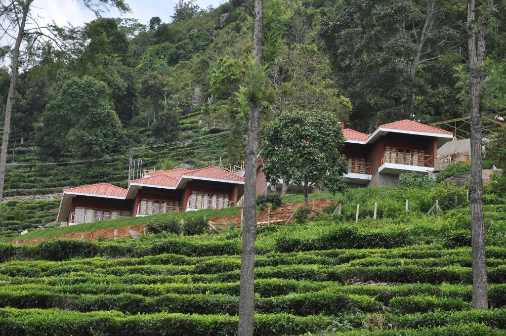 Hanging huts resorts kotagiri updated 2019 prices - Cost of building a swimming pool in india ...