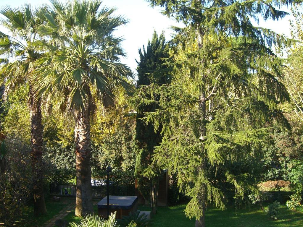 Casa de f rias le jardin de rome roma incluindo for Le jardin 489 rome