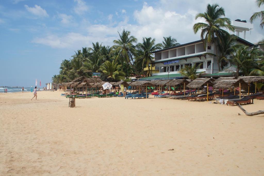 Отдых на берегу океана! Шри-Ланка!