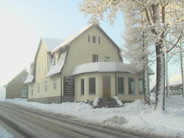 ReeDe Villa зимой